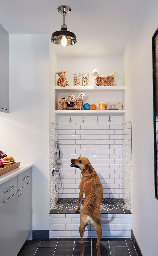 Dog Shower Design